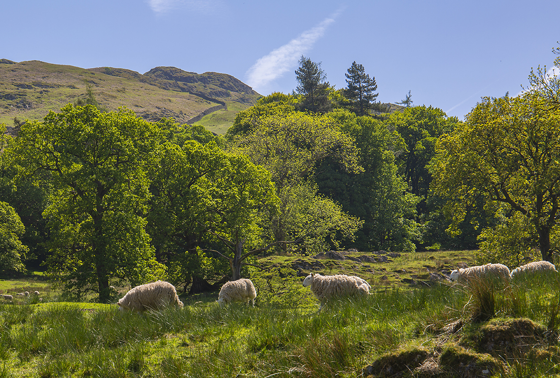 Patterdale area 2