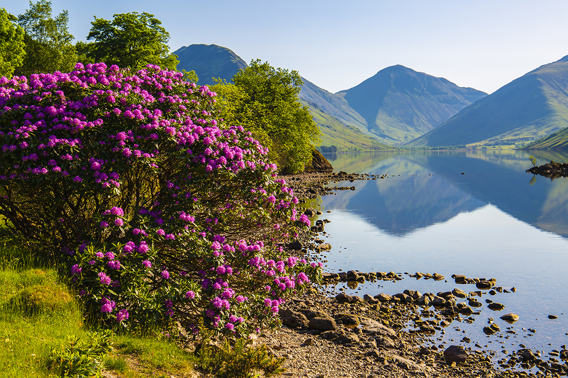 wastwater 18-1