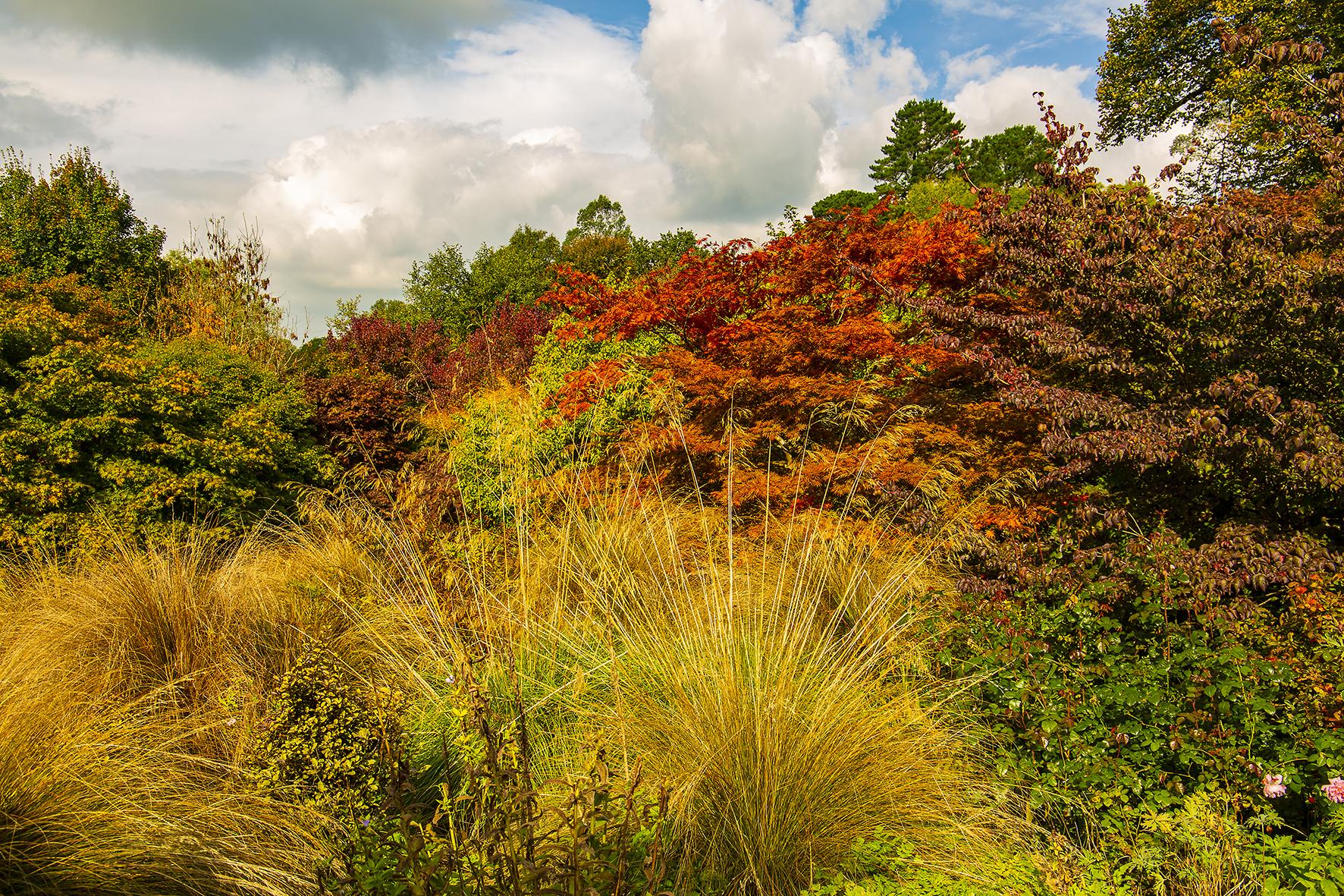 garden house autum forest