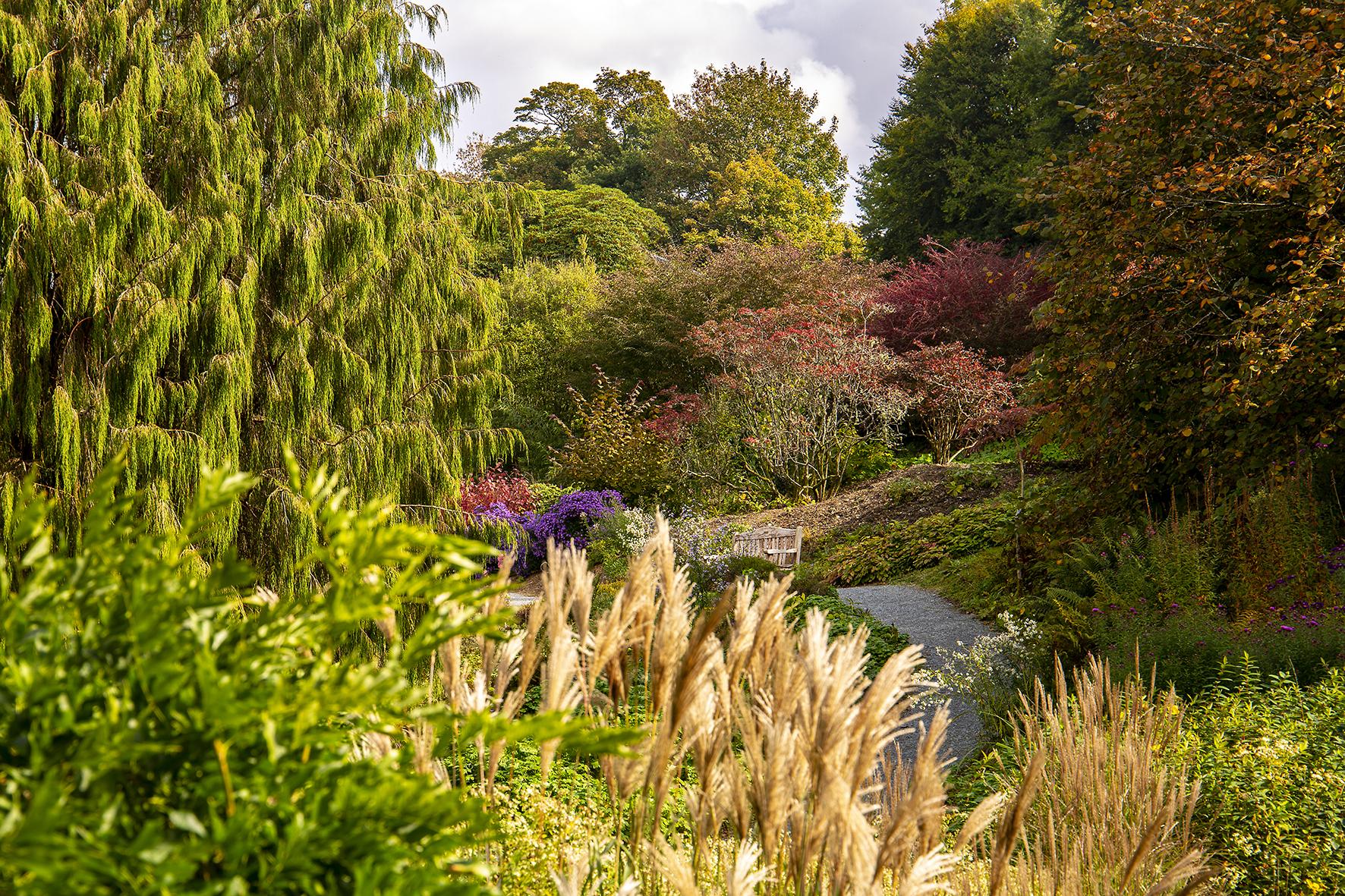 garden house autum woodland