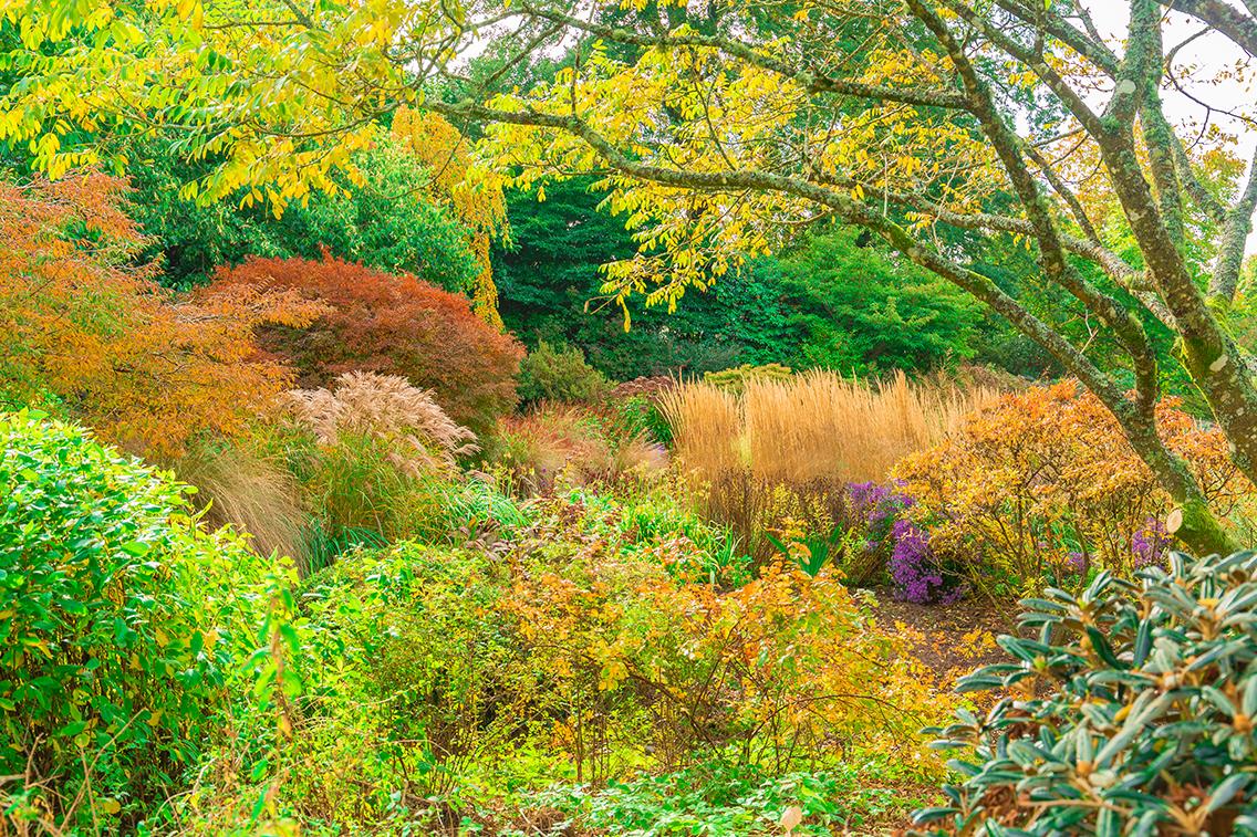 autumn gh lr