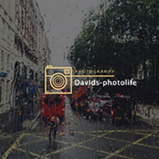 cropped-davids-logo.jpg