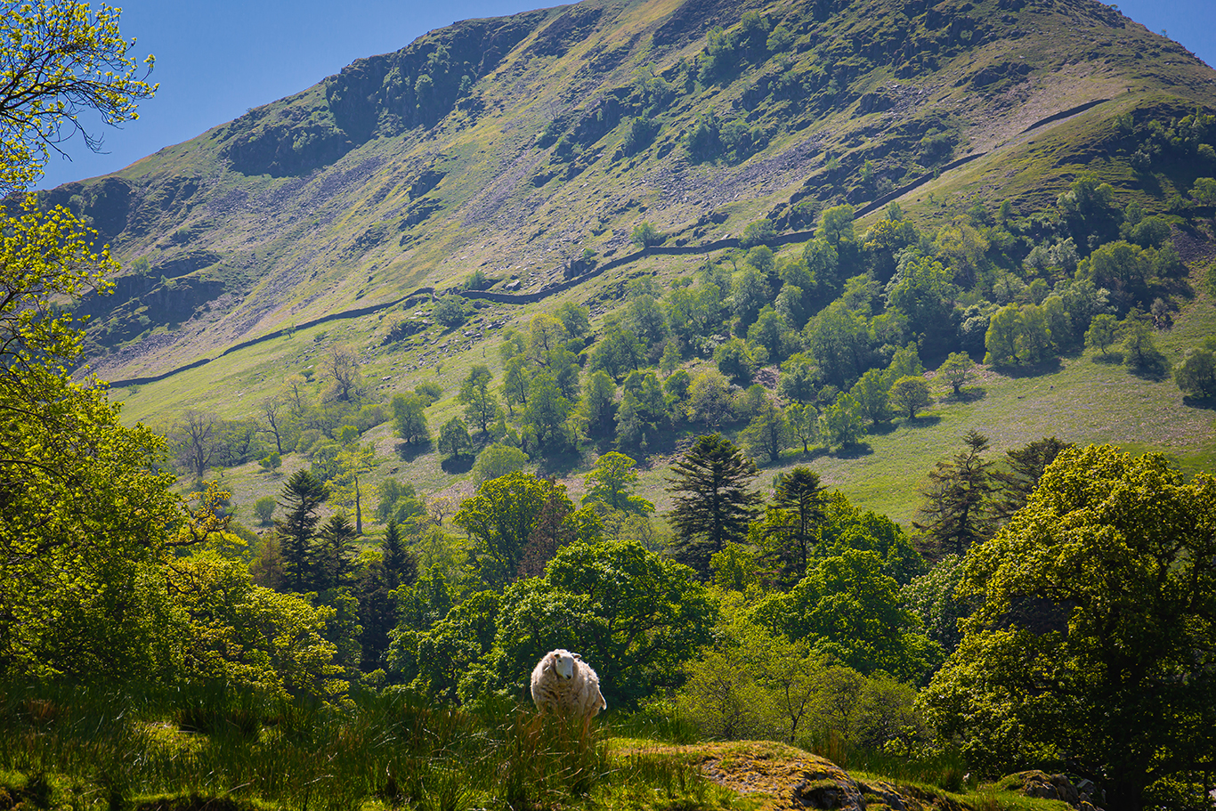 The fells around Patterdale (1 of 1)