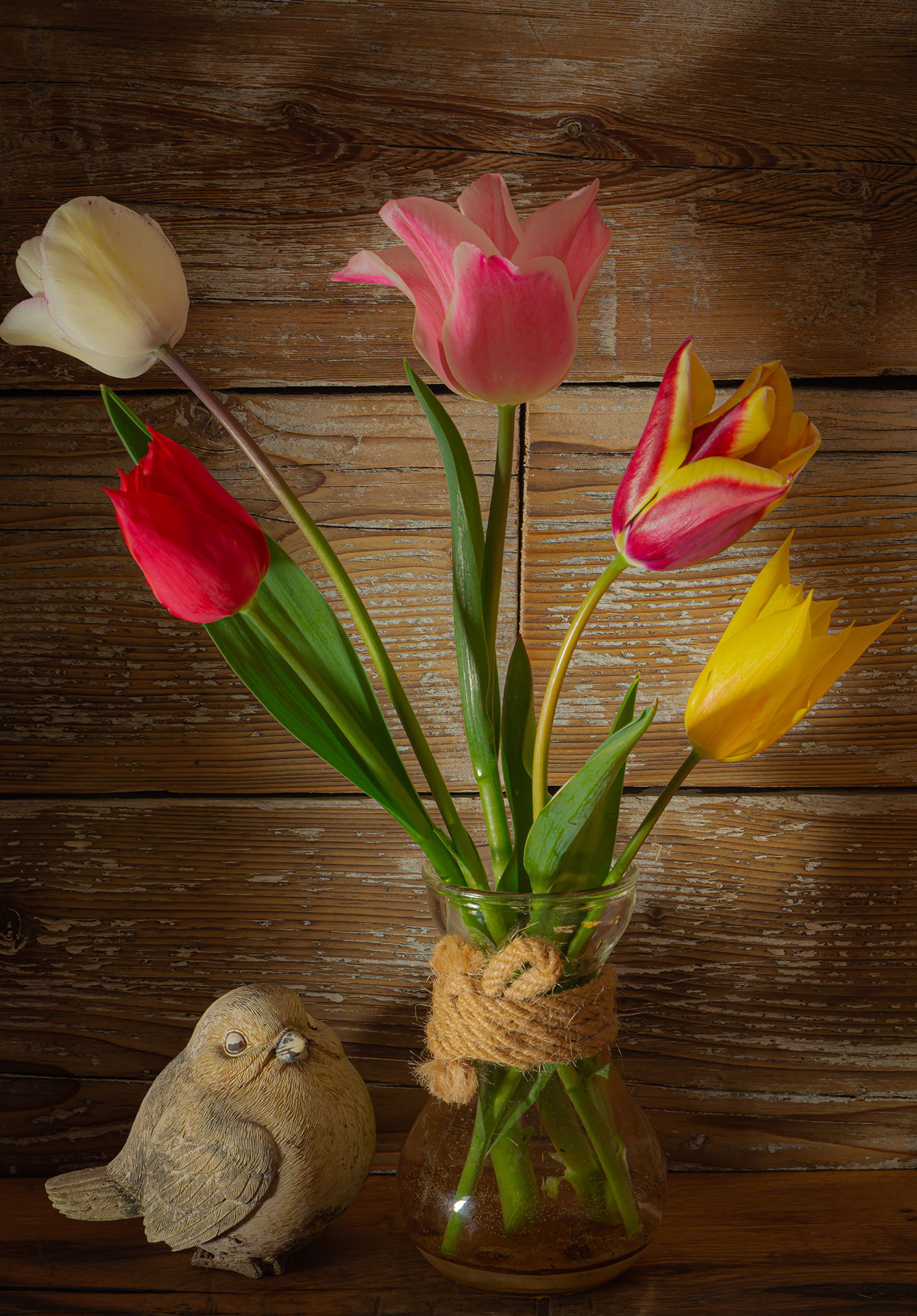 Tulips and the bird